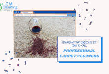 professional-carpet-cleaners